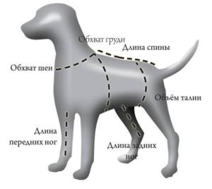 Схема собаки для пошива манекена