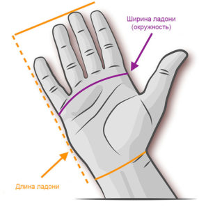 Размер-мужских-перчаток
