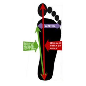 Замеряем размер ноги для носков