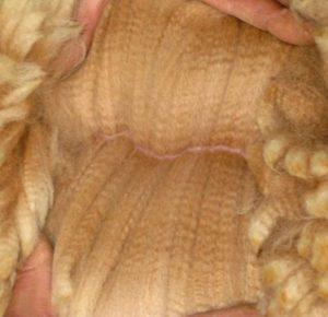 Шерсть альпака