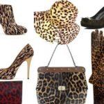 leopard_5-900×900