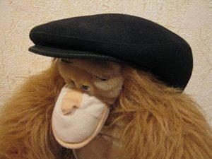 кепка на обезьянке