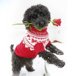 Бело-красный свитерок