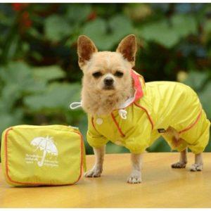 Желтый комбинезон для собаки