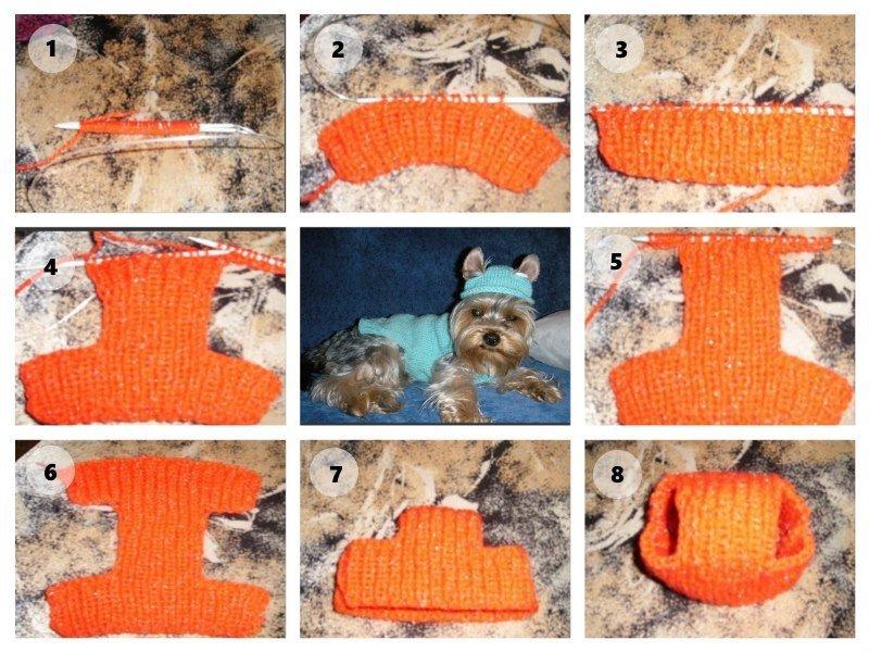 Вязание шапки для собаки
