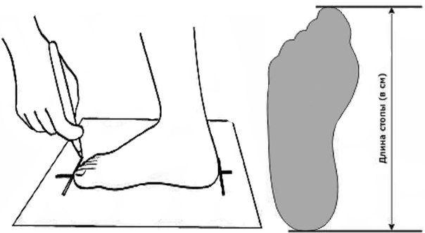 Мерки ноги 1