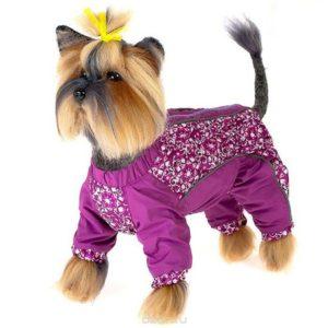 Малиновый комбинезон для собаки