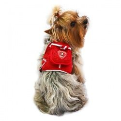 Рюкзак для собаки на спину