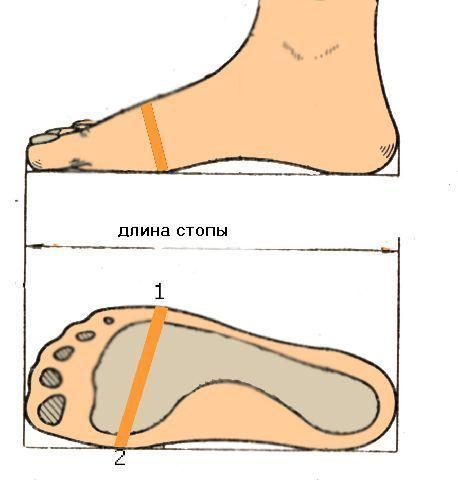 Мерки стопы (ширина, длина)
