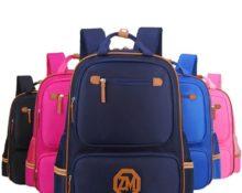 чем отличается портфель от рюкзака