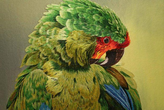 попугай вышитый шёлком