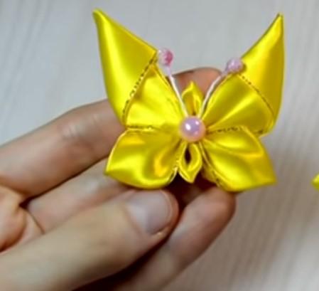 Атлас бабочка 13
