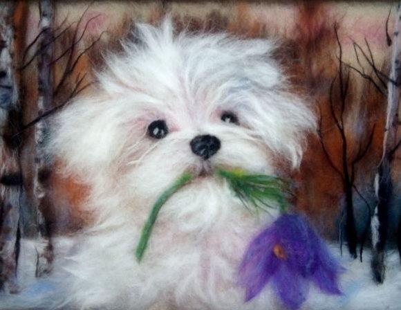 Картина из шерсти собачка