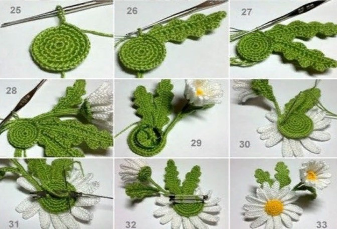 Цветы ромашки в вазоне 3