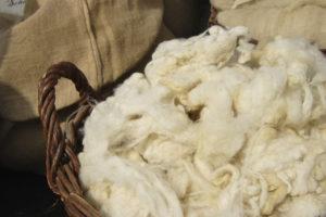овечья шерсть в корзине