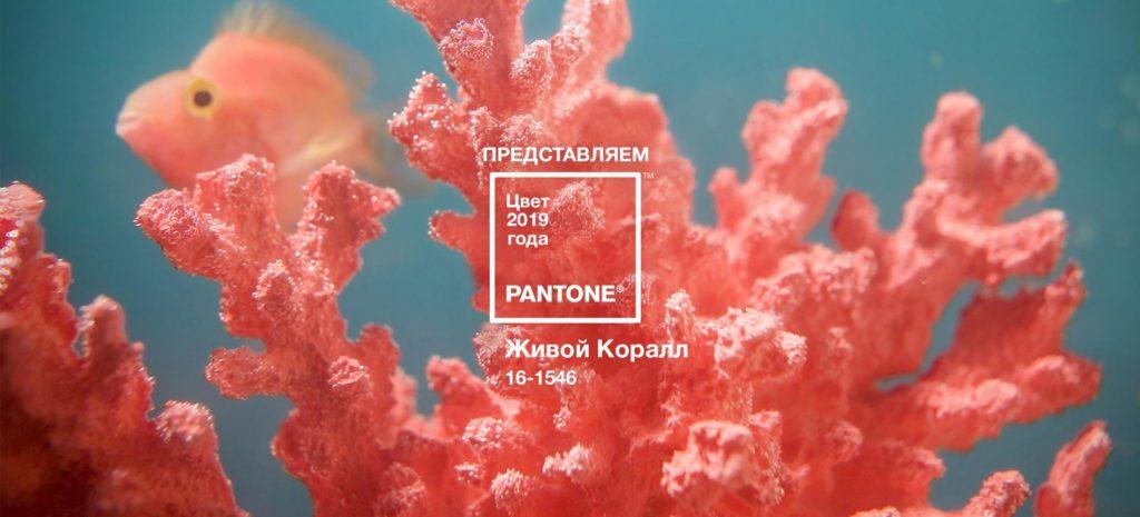 цвет живого коралла