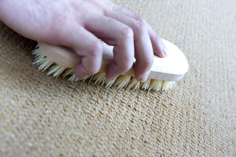 очистка ковра от шерсти