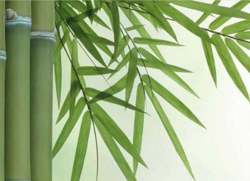 Трусы бамбуковое волокно