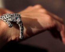 самый дорогой браслет в мире
