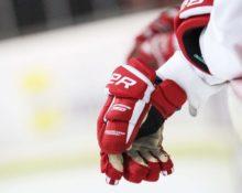 как называются хоккейные перчатки