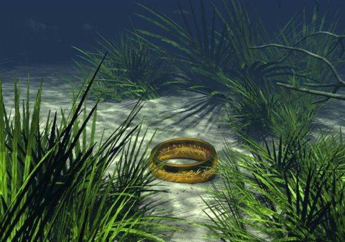 кольцо на дне