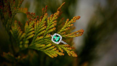 кольцо в траве