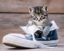 моча на обуви из ткани 2