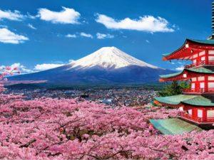 Япония вид