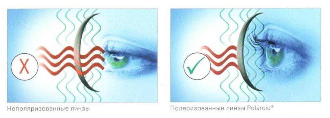полароид линзы