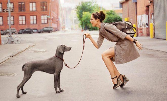 В чём ходить на прогулку с собакой, чтобы было модно, но удобно
