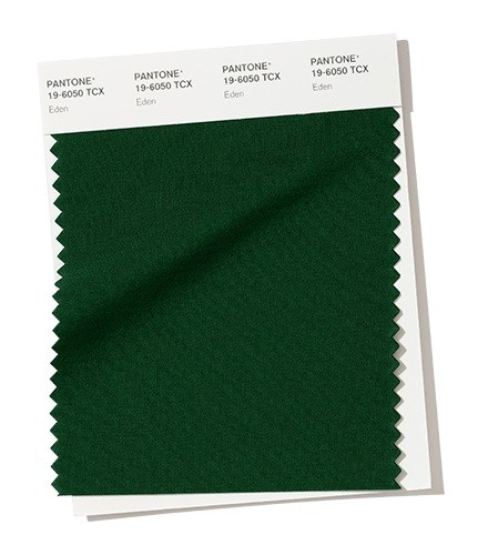 зеленого леса