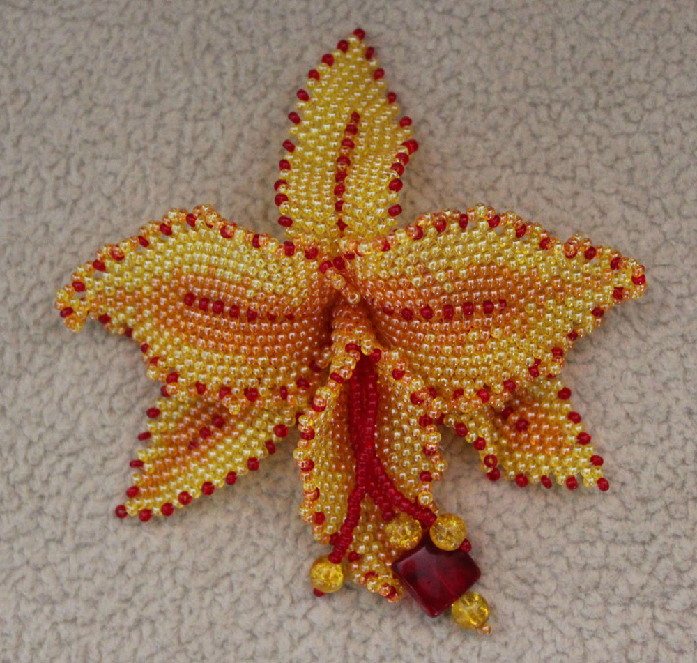 мозаичная орхидея