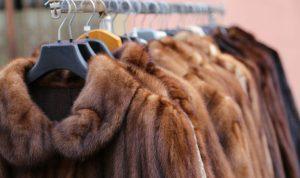 В Израиле запретили использование натурального меха